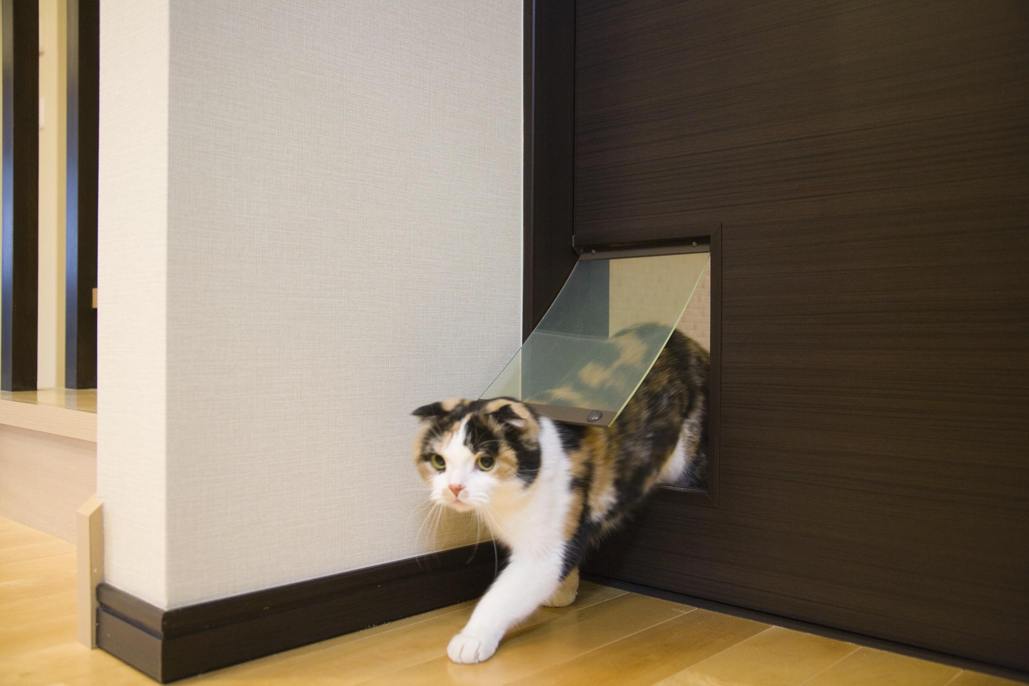 猫も嬉しい和モダンリフォーム